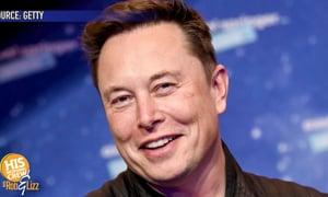Elon Musk Humanoid