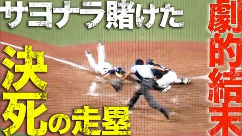 【激闘】ホークス牧原の返球 vs ライオンズ川越の死走塁【死闘】