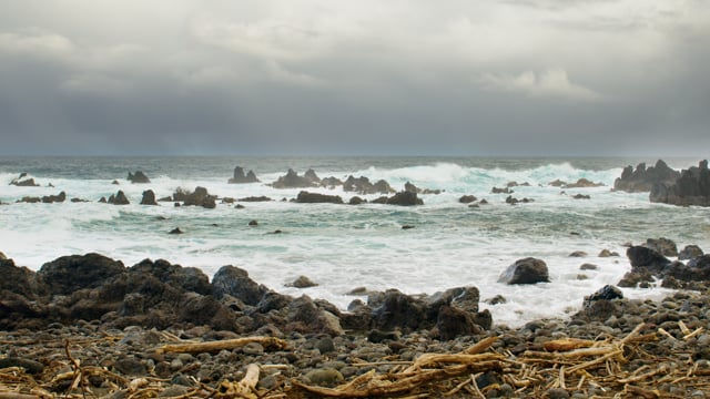Oceanfront Views of the Big Island, Laupahoehoe Point Beach Park