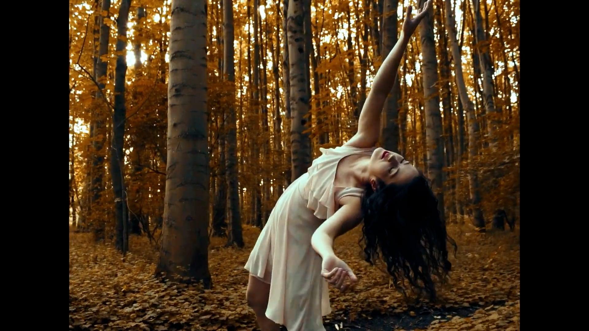 Chrissie Ardill - Dance & Aerial Hoop