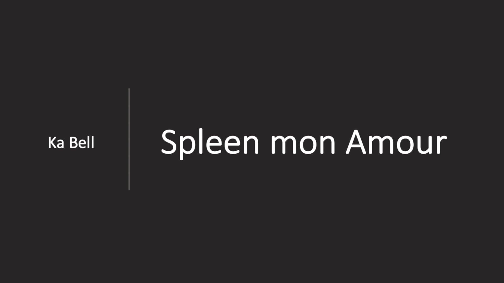 Spleen mon Amour  -  Ka Bell