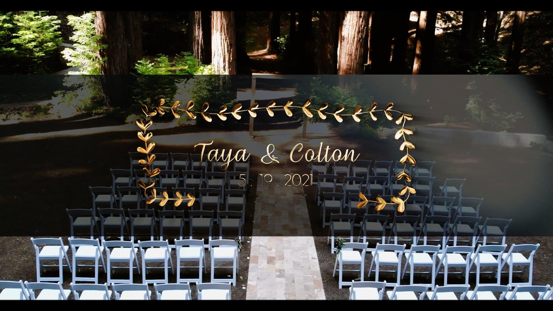 Redwoods Wedding   Cinematic Highlight Reel