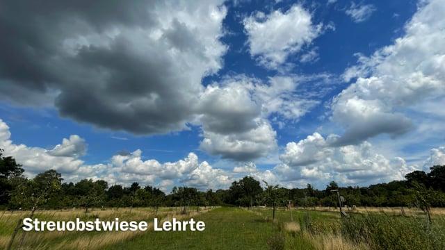 August 2021 in Bildern - Streuobstwiese-Schweine-Huehner-Honhorstsee.mov