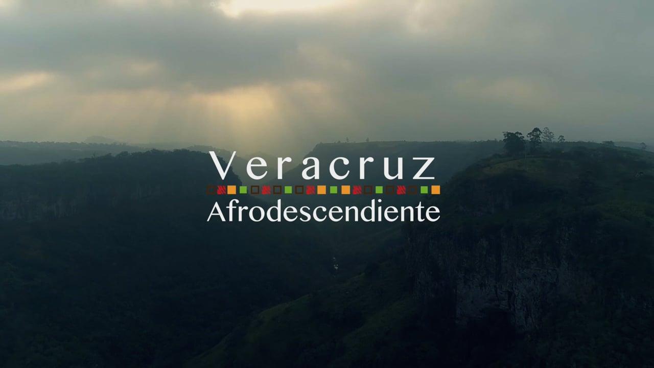 Ciudad y Puerto de Veracruz, 1ª parte