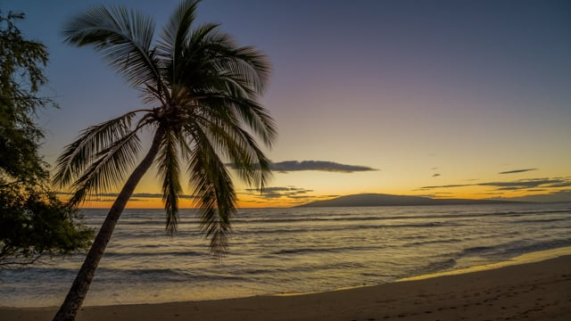 Golden Hour on Tropical Island. Maui Island, Hawaii - Nature Relax Video