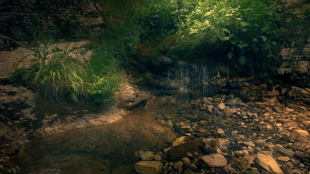 Forest Stream - Nature Relax Video
