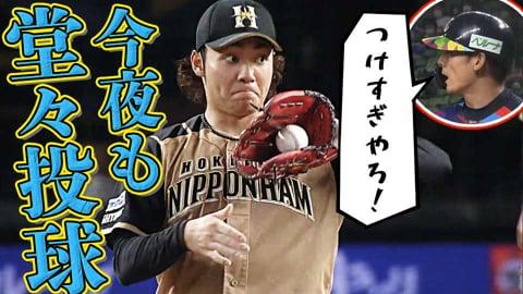 【追いロジン】ファイターズ・伊藤『今夜も堂々の投球を披露するか!?』【ばふばふ】