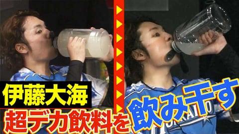【超デカ飲料】ファイターズ・伊藤『ゴクゴク…ゴクゴク…』