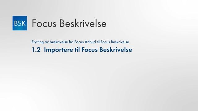 1.2 Importer til Focus Beskrivelse
