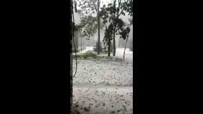 Violento temporale sul Gargano, la grandine imbianca la Foresta Umbra