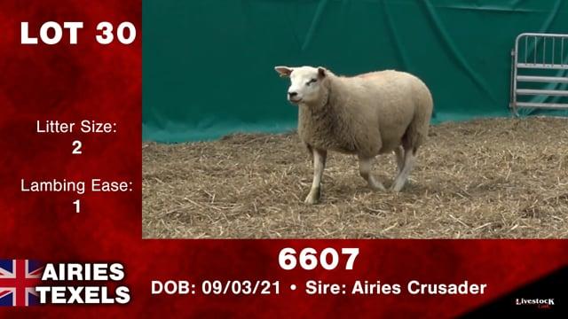 Lot #30 - 6607