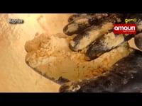 Gen TV Agro - Moinho que produz farinha na pedra