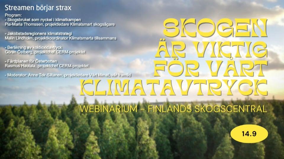 Skogen är viktig för vårt klimatavtryck