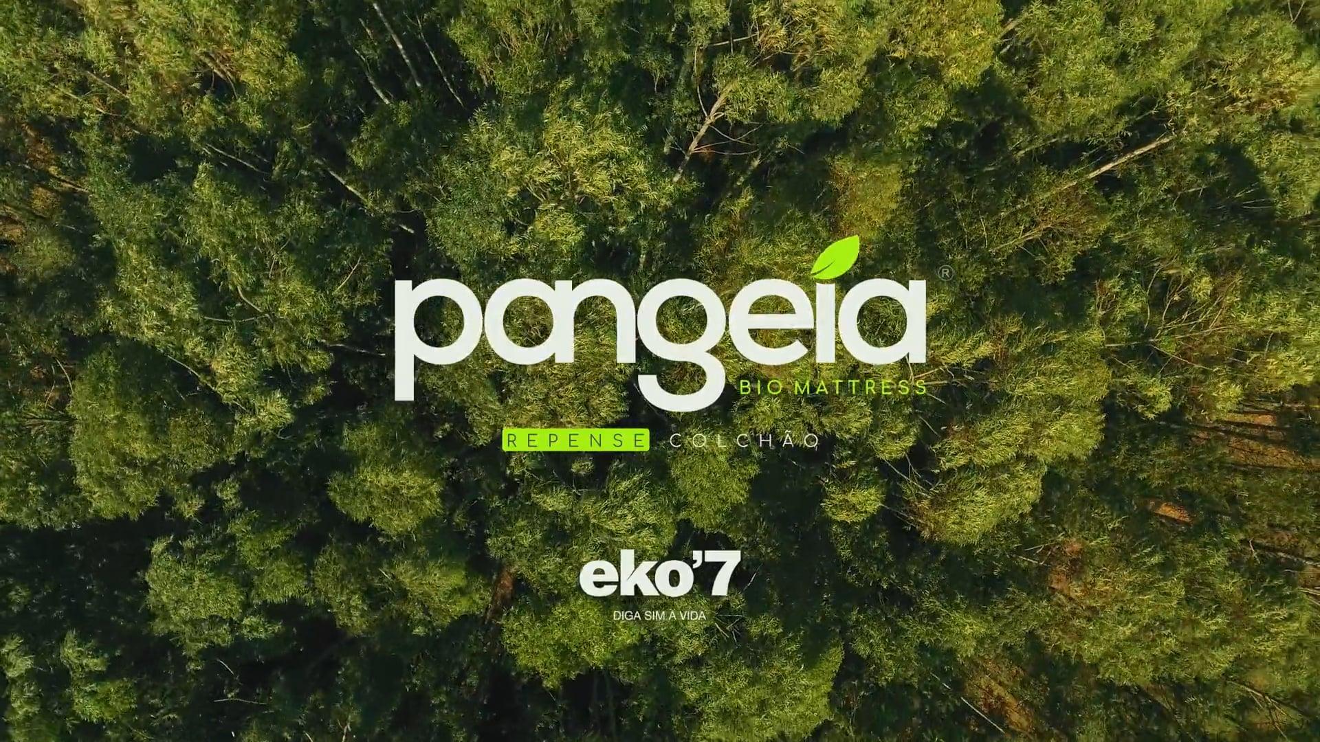 EKO7 · Pangeia