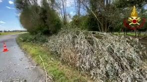 Alberi abbattuti e tetti danneggiati da un tornado a Marzano
