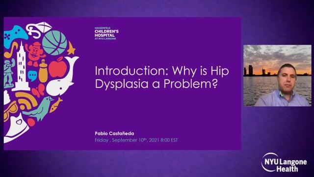 Why is Hip Dysplasia a Problem? – International Hip Dysplasia Symposium