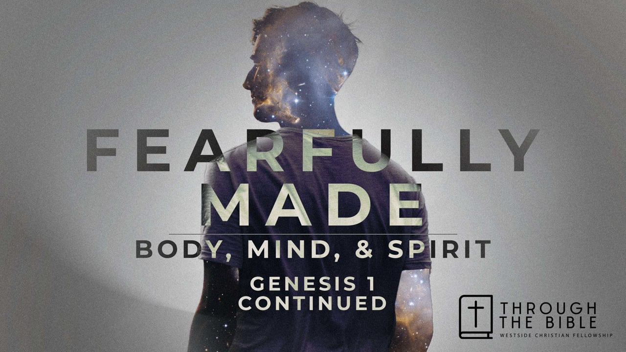 FEARFULLY MADE - BODY, MIND, & SPIRIT - Genesis 1 continued | Pastor Shane Idleman