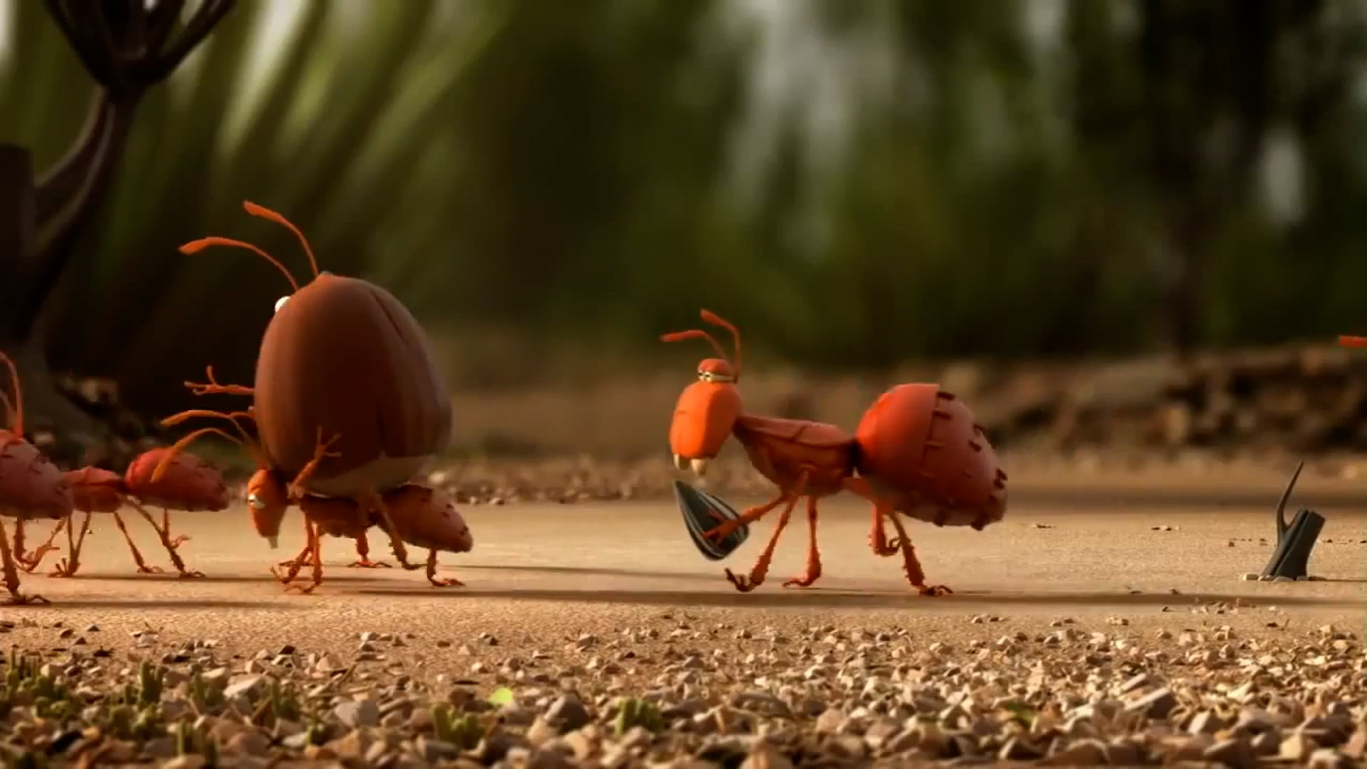 Ants & Anteater
