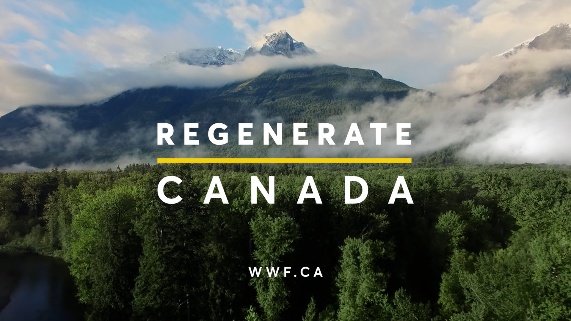 WWF Canada | Our Future Is Irreversible