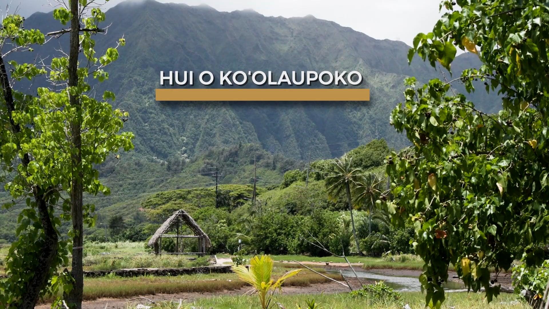 Community Restoration Partnership: Hui o Ko'olaupoko