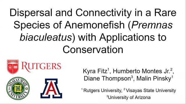 Dispersal and Connectivity in a Rare Species of Anemonefish (Premnas biaculeatus) with Applications to Conservation