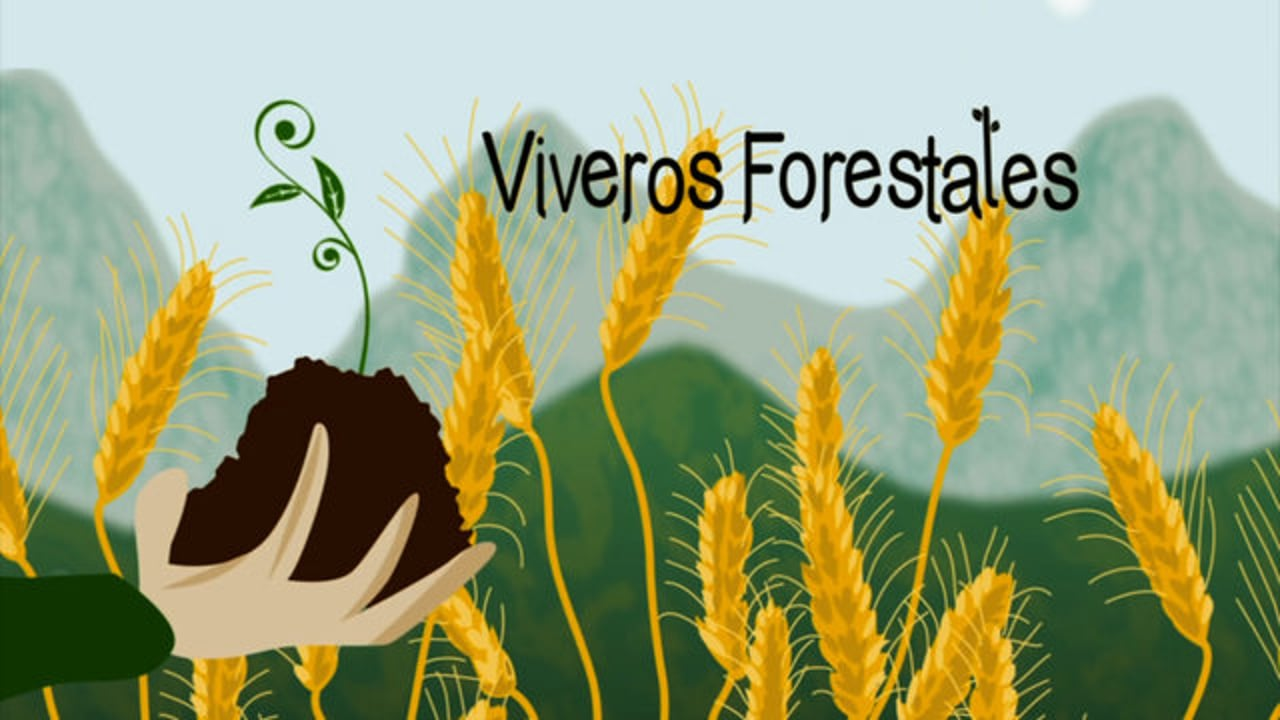 Viveros Forestales .3ª y  última entrega  de Monte Mediterráneo