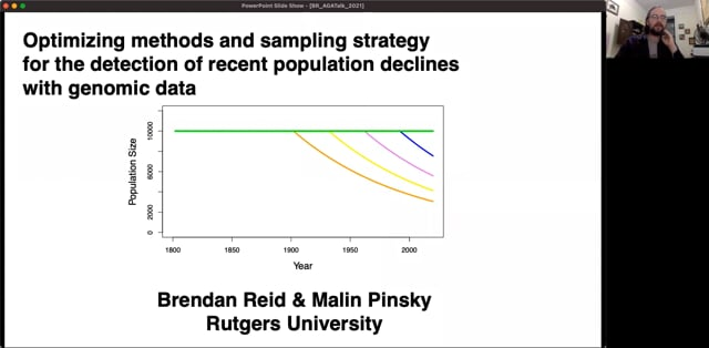 A simulation-based evaluation of methods and sampling schemes for detecting recent population declines