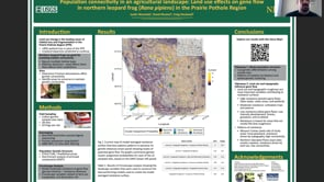 Population connectivity in agricultural landscapes: Land-use effects on northern leopard frog gene flow in the Prairie Pothole Region