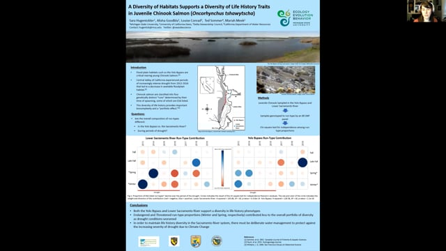 Quantifying Impacts of Floodplain Availability on Endangered Populations of Chinook Salmon