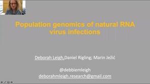 Population genomics of natural RNA virus infections