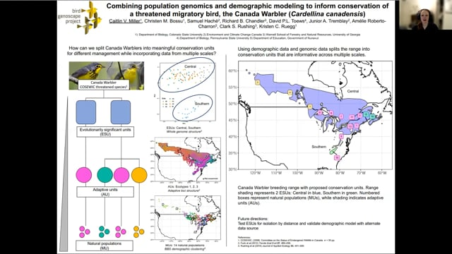 Combining population genomics and demographic modeling to inform conservation of a threatened migratory bird, the Canada Warbler