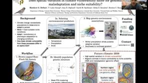 Winter snowfall drives adaptive genetic variation in North America's highest elevation breeding bird