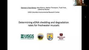 Determining eDNA shedding and degradation rates for freshwater mussels