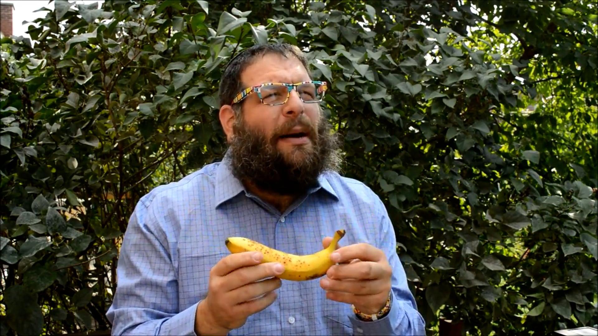 Magic Avi Banana Split!