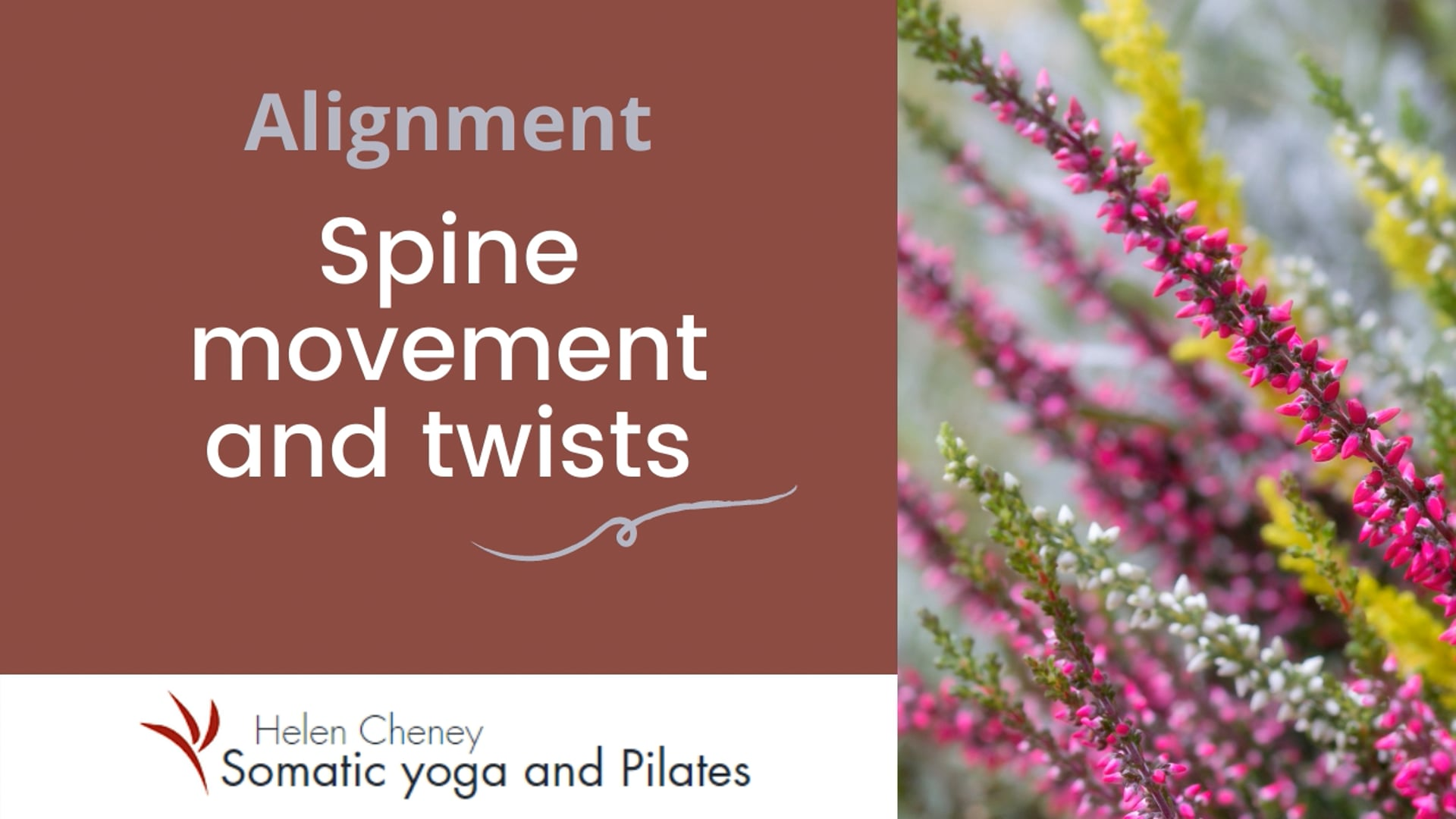 Spine movement and twists