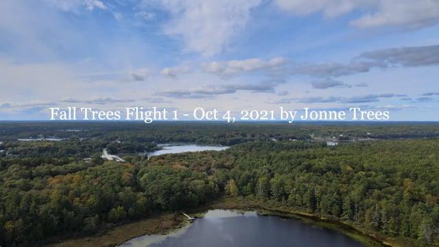 Fall Trees Flight - Oct 4, 2021