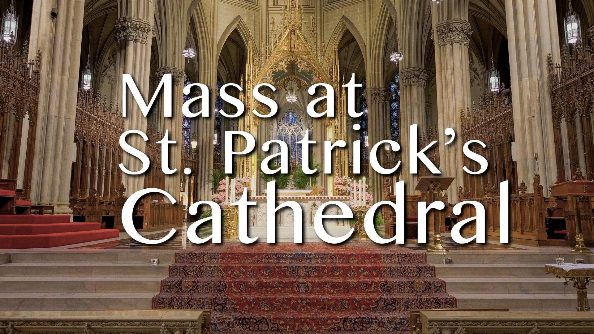 Mass from St. Patrick's Cathedral - October 19, 2021