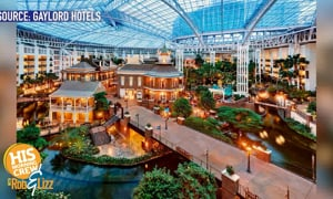 Elf Hotel Experience!