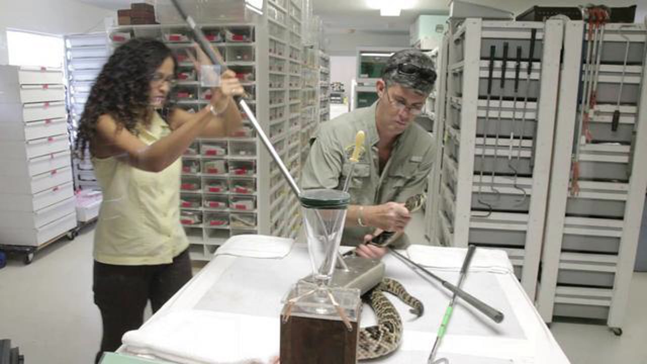 The Venom Interviews: Medtoxin Venom Laboratories