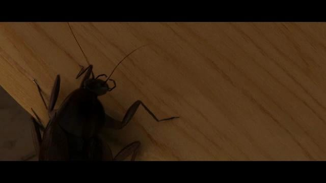 Cockroach Rigging | Animation