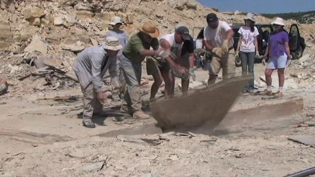 Excavating fossils