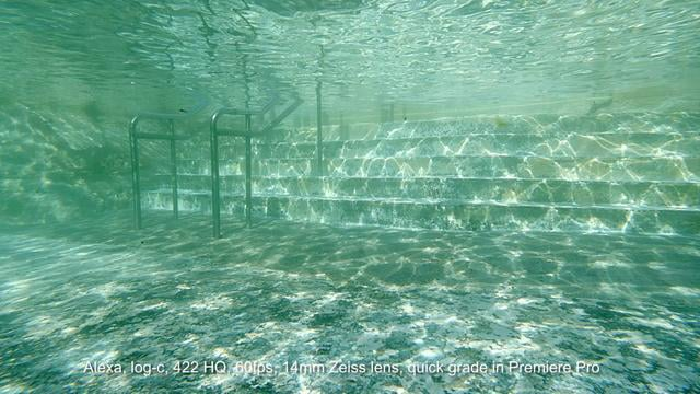 Arri Alexa underwater test footage