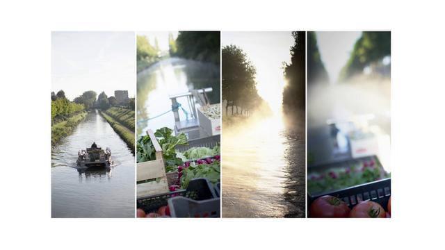 Claire Emmanuelle Hue /  Marché du l'eau