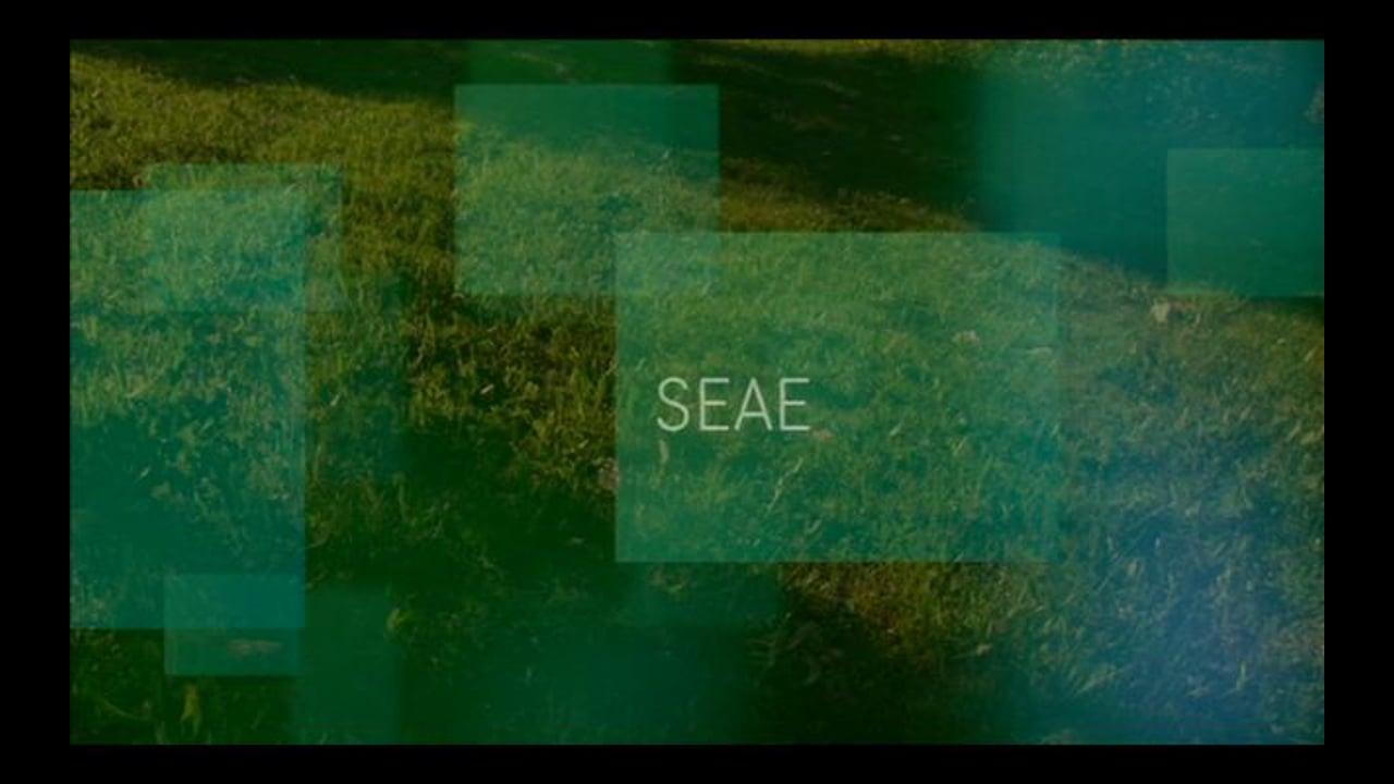 SEAE Capítulo Primero