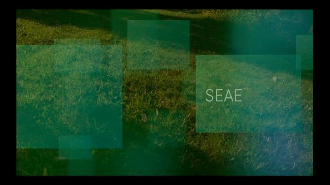 SEAE Capítulo Segundo