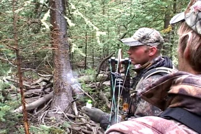 Winterhawk Elk