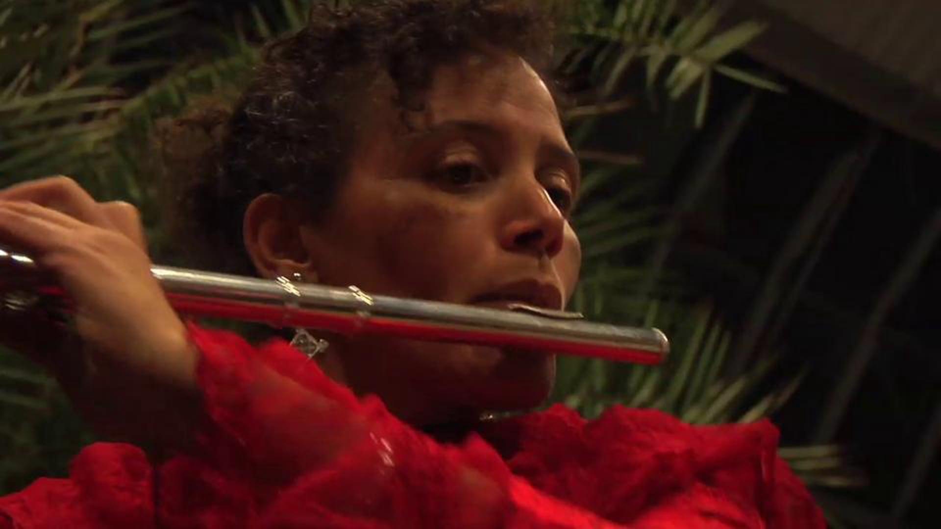 Nicole Mitchell: Harriet Tubman - Flight to Freedom
