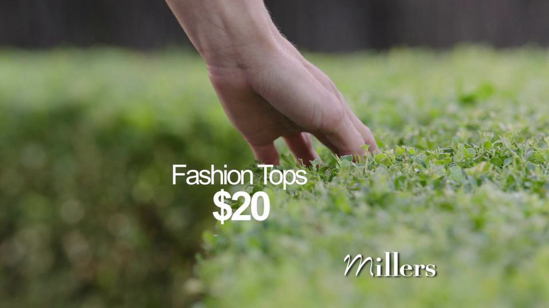 Millers Spring TVC