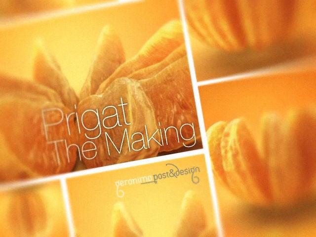 Prigat Making of