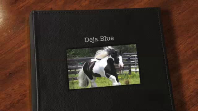 V.V. Deja Blue